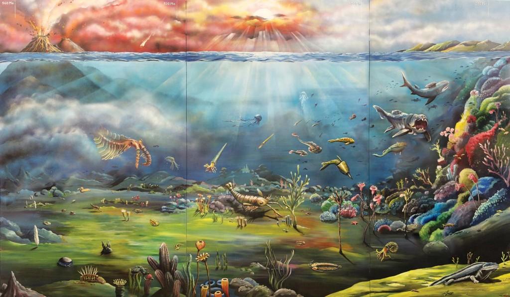 Mural_FossilShop_Panorama